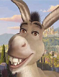 Donkey from Shrek animated movie character