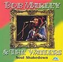 Soul Shakedown album cover