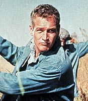 Actor Paul Newman in the movie Cool Hand Luke