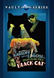 Poster for the movie The Black Cat