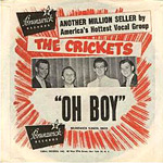 Crickets - Oh Boy! single sleve