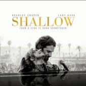 Shallow single cover